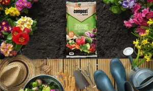 Bio compost by Agricult